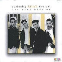 curiosity killed the cat/ordinary day .jpg
