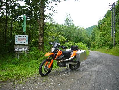 咲留林道4.JPG