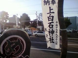 カミシロイシジンジャ_1.JPG
