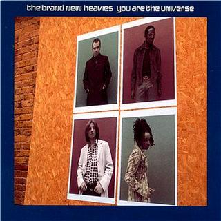 You Are The Universe(Curtis&Moore's Universal Summer Groove).jpg