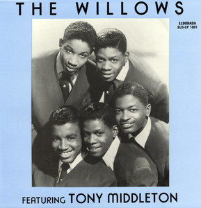 the willows.jpg